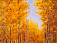 Crested Butte Fall Road