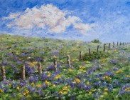 Lupine Trail