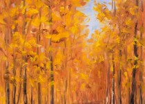 Fall Aspen Road