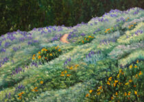 The Lupine Trail 30x40 $2400