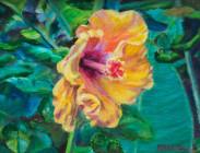 Hanalei Hibiscus 6x8 $275