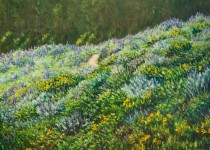 Lupine Trail 36x48 $3,600 (Sold).