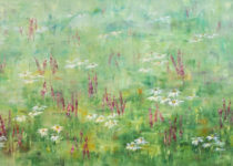 Penstemon and Daisies 24x48 $1,900